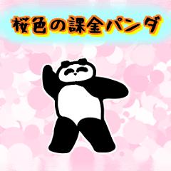 桜色の課金パンダ