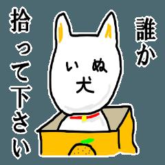 【犬】イヌいぬワンワン