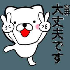 【宮井】が使う主婦が作ったデカ文字ネコ