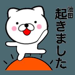 【池田】が使う主婦が作ったデカ文字ネコ