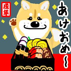 柴犬くんのお正月と冬バージョン