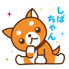 柴犬のしばちゃん (2)