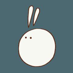 なんかわウサギ おもち