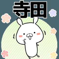 寺田の元気な敬語入り名前スタンプ(40個入)