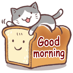 毎日おはよう猫