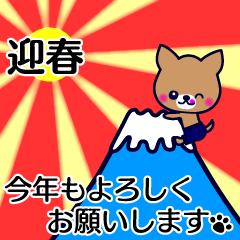 動く☆お正月チワワ☆ちわわん☆
