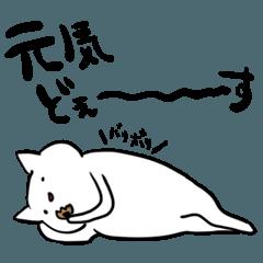 ぬるい感じの猫(2匹目)