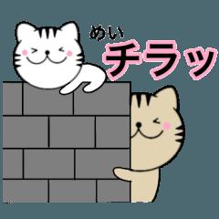【めい】が使う主婦が作ったデカ文字ネコ