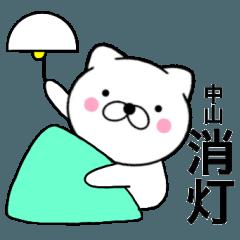 【中山】が使う主婦が作ったデカ文字ネコ2