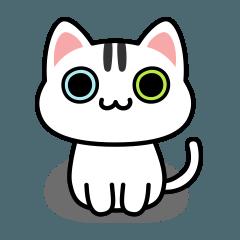 UNO CAT No.08 Basic Sticker