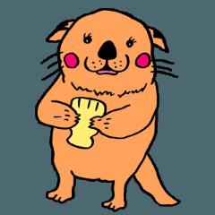 ラッコ犬の根岸