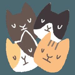 CatCatx2