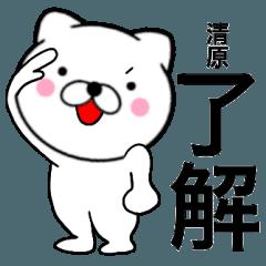 【清原】が使う主婦が作ったデカ文字ネコ