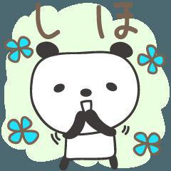 しほちゃんパンダ panda for Shiho