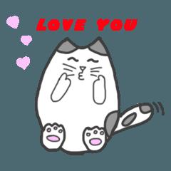 太った猫 - トロ