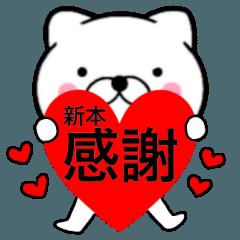 【新本】が使う主婦が作ったデカ文字ネコ