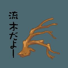 流木と石とナナ