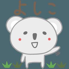 よしこちゃんコアラ koala for Yoshiko