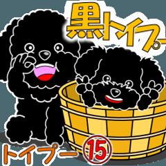 黒トイプー15