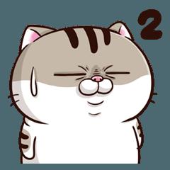 Ami-太った猫 可愛い 2