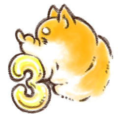 柴犬 ワンダーランド 3
