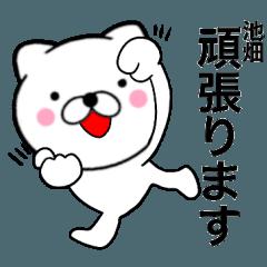 【池畑】が使う主婦が作ったデカ文字ネコ