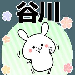 谷川の元気な敬語入り名前スタンプ(40個入)