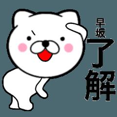 【早坂】が使う主婦が作ったデカ文字ネコ