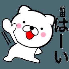 【新田】が使う主婦が作ったデカ文字ネコ