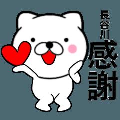 【長谷川】が使う主婦が作ったデカ文字ネコ