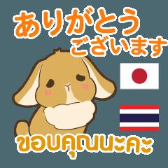 [LINEスタンプ] ウサギ : 感謝の毎日 日本語タイ語