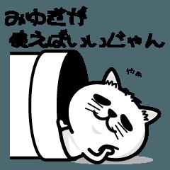 飼い猫ライムはみゆみちゃんが大好き