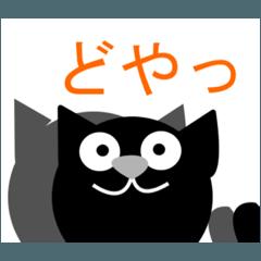 黒猫アンド白猫