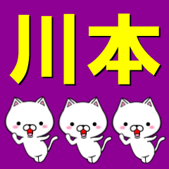 超★川本(かわもと・カワモト)なネコ