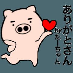 Name pig Ta-chan