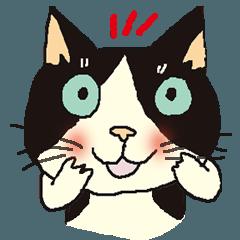 [LINEスタンプ] nobimaru Cat2