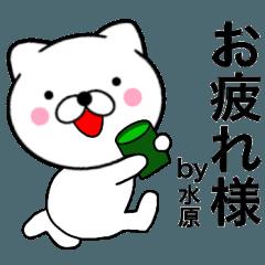 【水原】が使う主婦が作ったデカ文字ネコ