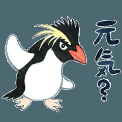 イワトビペンギンスタンプ