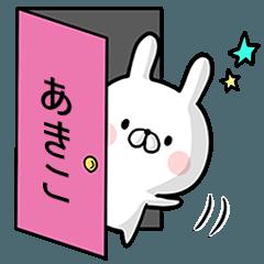 【あきこ】専用名前ウサギ