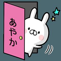 【あやか】専用名前ウサギ
