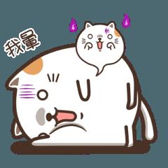 Mochi Cat - meow meow meow