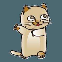 500匹の猫 8-008j-3