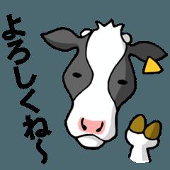 いばらきの牛 特濃
