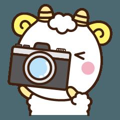 メリさんとカメラ