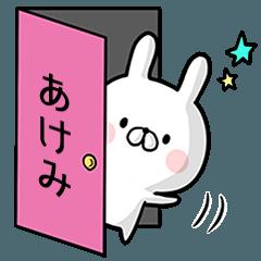 【あけみ】専用名前ウサギ