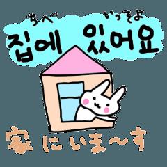 うさぎ韓国語スタンプ(ハングル読み方+訳
