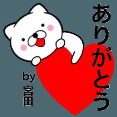 【宮田】が使う主婦が作ったデカ文字ネコ