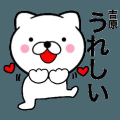 【吉原】が使う主婦が作ったデカ文字ネコ