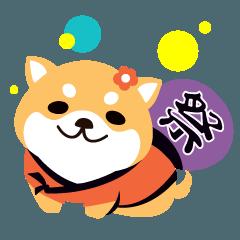 柴犬さん!!!