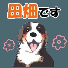 田畑さんが使う名前スタンプ・子犬イラスト